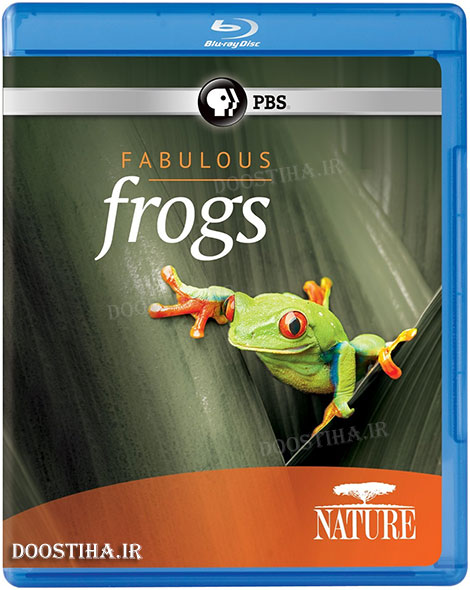 PBS Nature Fabulous Frogs 2014