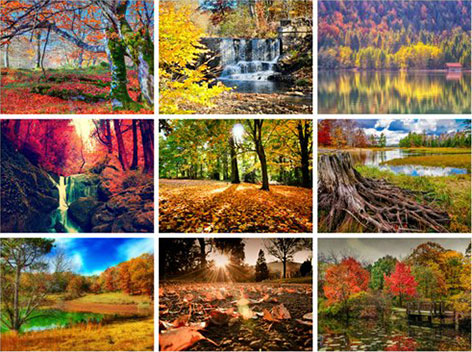 Beautiful Autumn HD Wallpapers