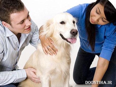 ایا سگ ذاتا نجس است