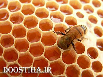 درمان بی خوابی با خوردن عسل