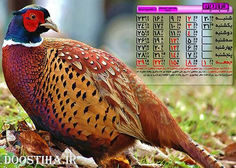 دانلود تقویم پی دی اف سال 1393