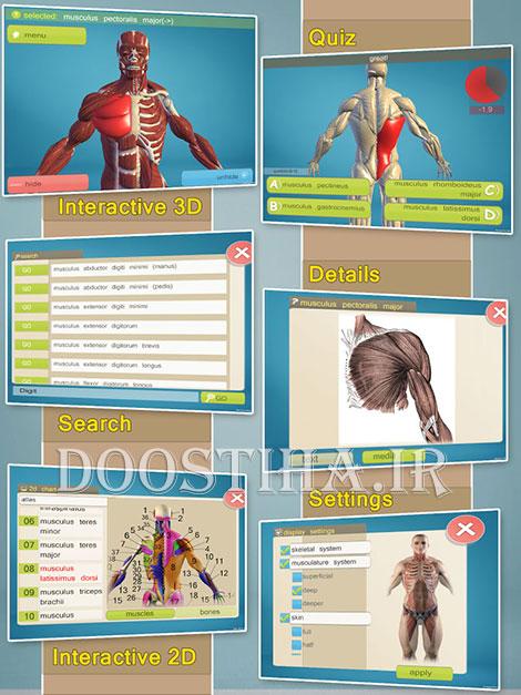 یادگیری آناتومی بدن انسان با اپلیکیشن Easy Anatomy 3D