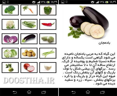 دانلود نرم افزار فارسی خواص سبزیجات برای اندروید