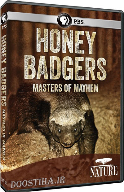 PBS Nature - Honey Badgers: Masters of Mayhem 2014