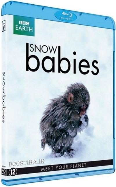 دانلود مستند BBC - Snow Babies (2012) BluRay