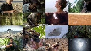 A Day in the Life of Bear Grylls