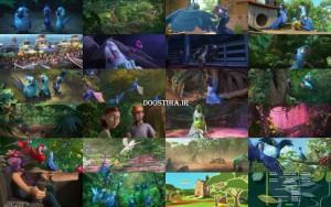 دانلود مستقیم انیمیشن ریو 2 با کیفیت اورجینال