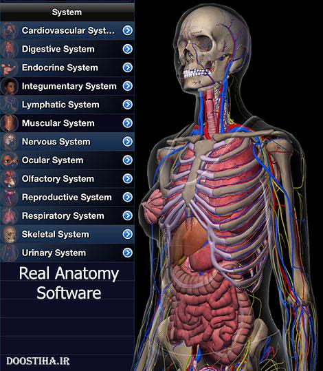 دانلود نرم افزار آناتومی واقعی بدن Real Anatomy