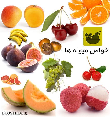 دانلود نرم افزار خواص میوه ها و سبزیجات برای موبایل