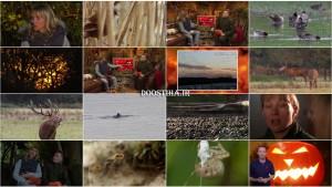 BBC Autumnwatch 2014 E01