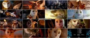 دوبله گلوری انیمیشن Legend of the Guardians 2010