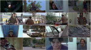 دانلود رایگان فیلم آواز گنجشک ها با لینک مستقیم و کیفیت بالا