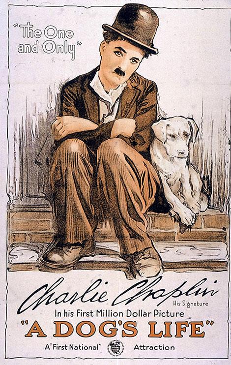دانلود فیلم زندگی سگی چارلی چاپلین A Dog's Life 1918