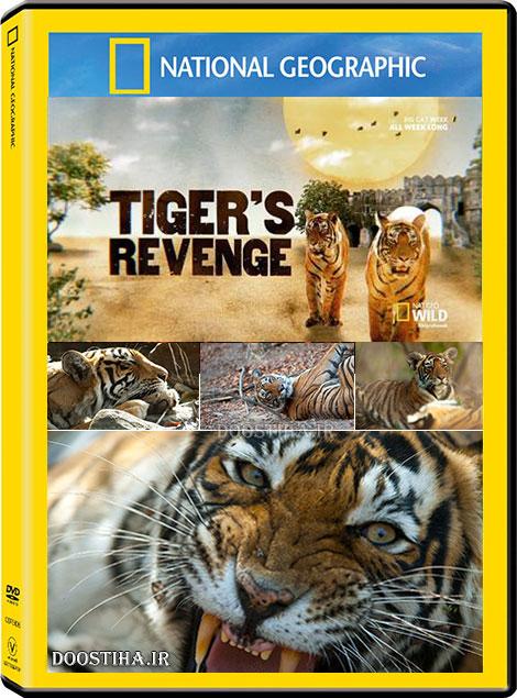 دانلود مستند انتقام ببر Tiger's Revenge 2015 HDTV