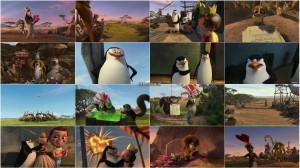دانلود دوبله فارسی انیمیشن Madly Madagascar 2013