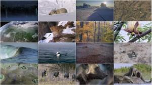 دانلود قسمت اول مستند سیاره زمین