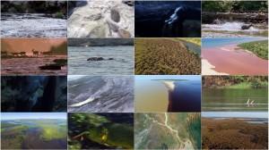 دانلود قسمت سوم مستند سیاره زمین