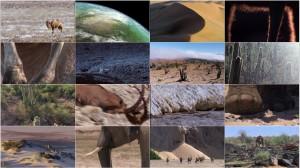 دانلود قسمت پنجم مستند سیاره زمین