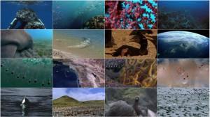 دانلود قسمت نهم مستند سیاره زمین