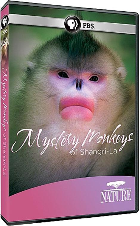 PBS Nature: Mystery Monkeys of Shangri-La 2015