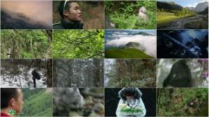 PBS Nature - Mystery Monkeys of Shangri-La 2015
