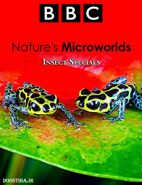 BBC - Nature's Microworlds: Insect Specials 2014