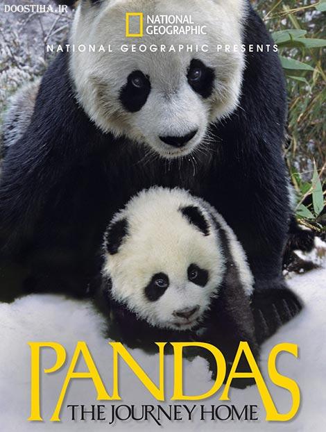 دانلود دوبله فارسی مستند Pandas: The Journey Home 2014