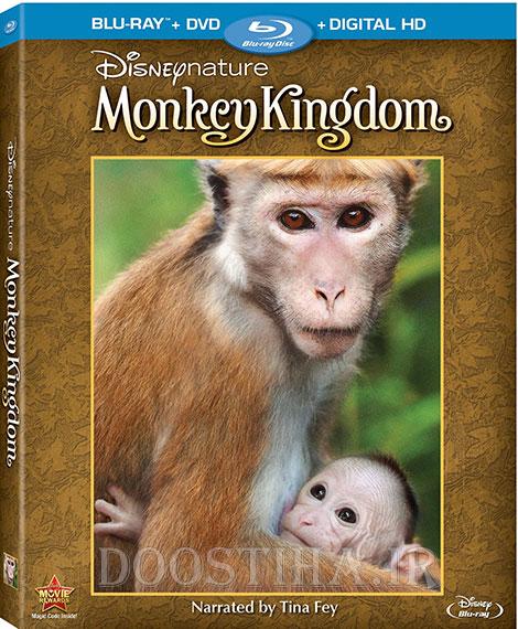 دانلود مستند پادشاهی میمون Monkey Kingdom 2015