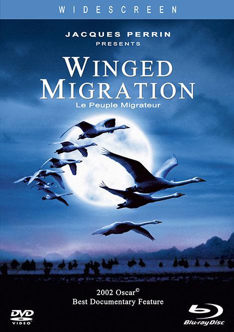 دانلود مستند مهاجرت پرندگان Winged Migration 2001