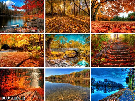50 Beautiful Autumn HD Wallpapers Set