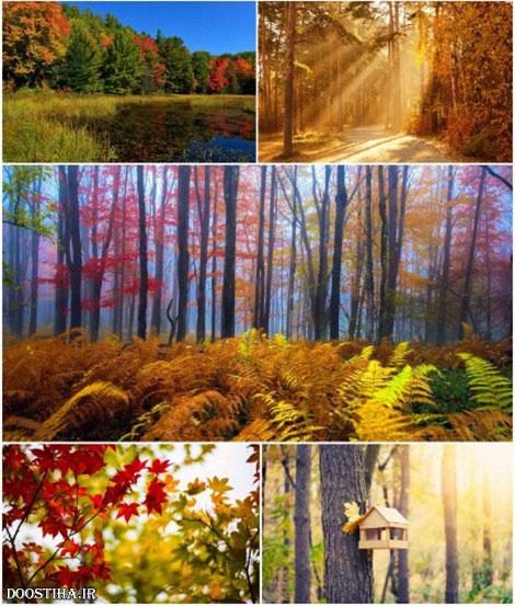 دانلود والپیپرهای مناظر پاییزی Fall Scenery Wallpapers