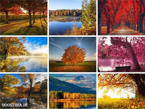 دانلود عکس های جدید پاییز Autumn HD Wallpapers