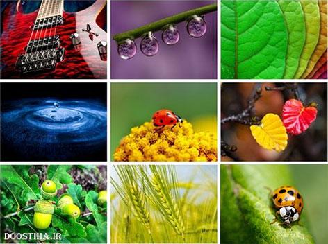 دانلود 60 والپیپر ماکرو Beautiful Macro HD Wallpapers