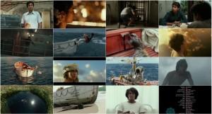 دانلود فیلم زندگی پای با دوبله فارسی Life of Pi 2012