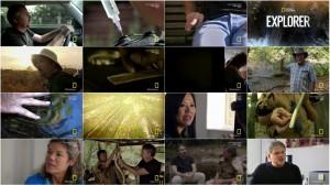 دانلود مستند National Geographic Explorer Call of the Wild HDTV