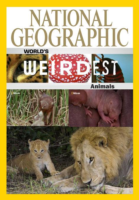 دانلود مستند عجیب ترین حیوانات محصول نشنال جئوگرافیک 2015
