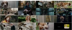 دانلود فیلم آندرداگ با دوبله فارسی Underdog 2007