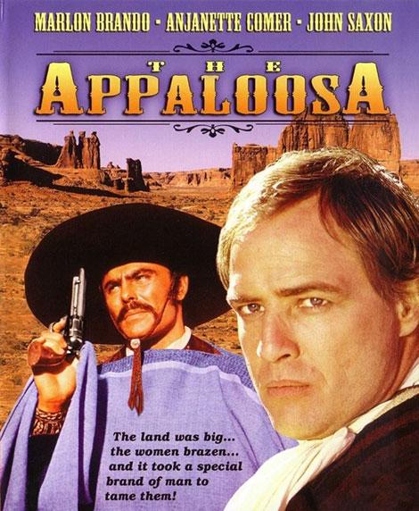 دانلود دوبله فارسی فیلم آپالوزا The Appaloosa 1966