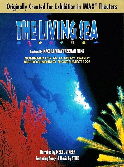دانلود مستند دریای زندگی The Living Sea 1995