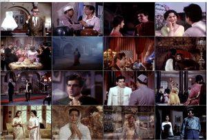 دانلود فیلم هندی دل دیوانه با دوبله فارسی
