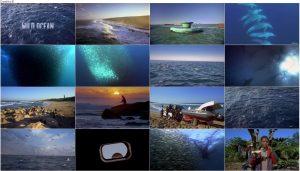 IMAX: Wild Ocean 2008