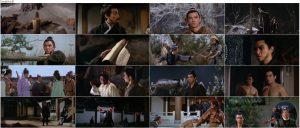 دانلود دوبله فارسی فیلم One-Armed Swordsman 1967
