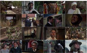 دانلود فیلم گذرگاهی به هند A Passage To India 1984