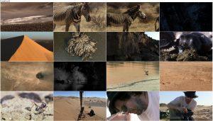 BBC Africa 2013 E05 Sahara