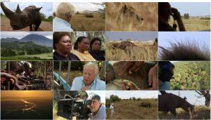 BBC Africa 2013 E06 The Future
