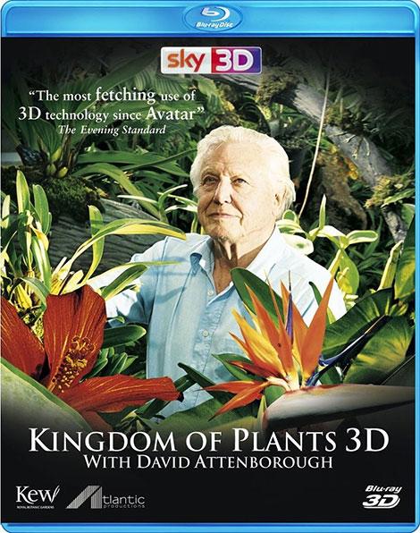 دانلود مستند پادشاهی گیاهان Kingdom of Plants 3D 2012
