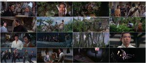 دانلود فیلم بازگشت شمشیرزن یک دست با دوبله فارسی