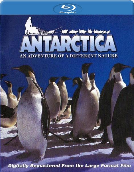 دانلود مستند جنوبگان Antarctica 1991