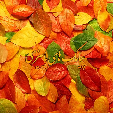 اس ام اس و پیامک احساسی فصل پاییز 1395, جملات زیبای پاییز, متن ادبی درباره پاییز, شعر ویژه پاییز, پیام عاشقانه در مورد پاییز, فصل پاییز, زیباترین پیامک جدید پاییزی