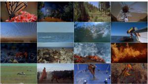 دانلود مستند سفرهای شگفت انگیز Amazing Journeys 1999